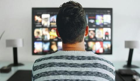 person watching streaming service on TV